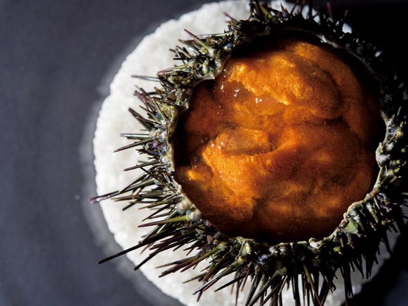#6|遠征レストラン|東京の名料理人がわざわざ赴く店〜北海道 札幌市【フランス料理】Le Musée〜