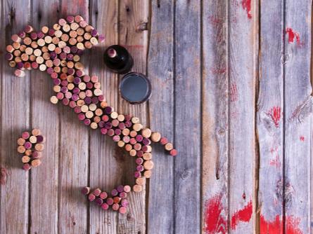 #5|イタリアに〝イタリアワイン〞はない!?