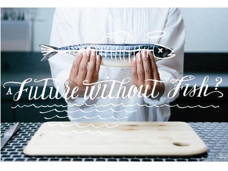 鯖が食べられなくなる未来が来る!? 毎号すごい魚がおまけで付く雑誌「イサリビ – 未来も魚を食べるぞ通信」創刊。