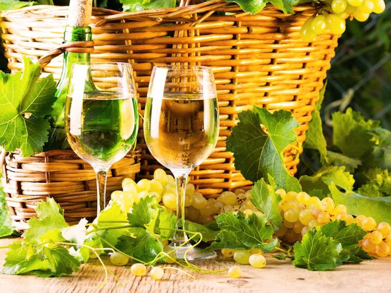 #3|初夏ワインの上手な選び方〜ワイン・ライター葉山さんに語ってもらいます!〜