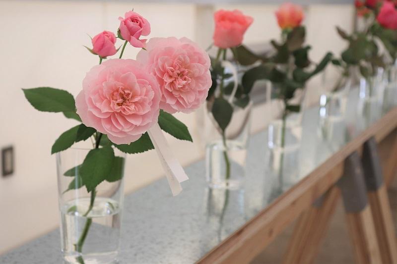 Scenery Where Rich Japan is Created:美しい日本が生まれる風景 Rose Farm KEIJI