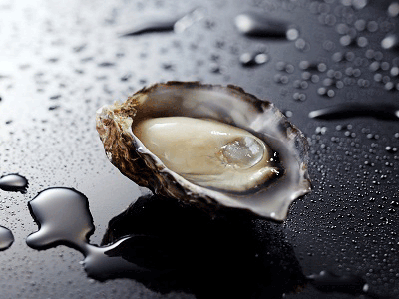Beautiful Oysters from Limpid Sea KUNISAKI OYSTER|Scenery Where Rich Japan is Created