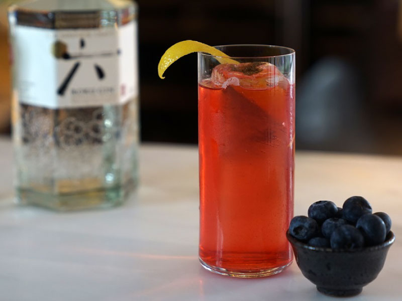 Restaurant Special, Sloe Gin & Tonic  Using Homemade Flavoured Gin|Suntory ROKU × Dinings SW3
